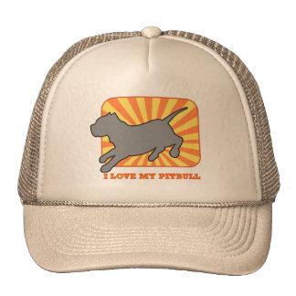 Silueta de Pitbull en el gorra de la puesta del so