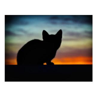 Silueta del gatito contra el cielo de la puesta postal