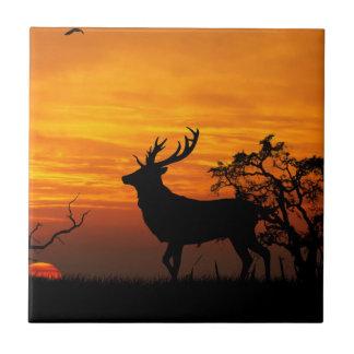Silueta grande del dólar en la puesta del sol azulejo
