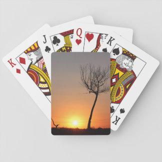 Silueta sola del árbol barajas de cartas