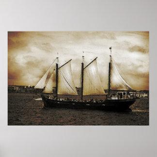 Silva alto de la nave póster