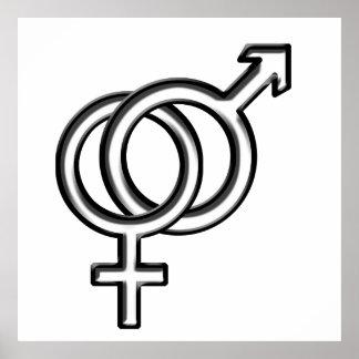 Símbolo para el varón y la hembra póster