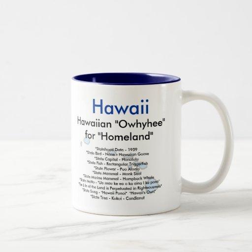 Símbolos y mapa de Hawaii Taza De Dos Tonos