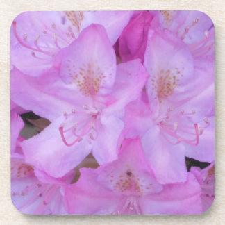 Sistema floral rosado del práctico de costa