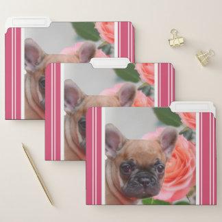 Sistema rosado del dogo francés de carpetas de