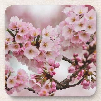 Sistema rosado del práctico de costa de las flores posavasos de bebida