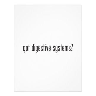 sistemas digestivos conseguidos folleto 21,6 x 28 cm