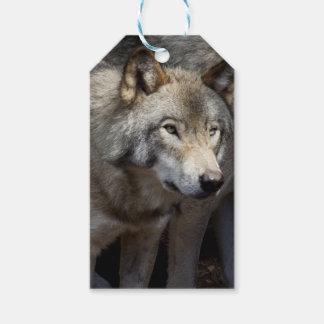 Situación del lobo gris etiquetas para regalos