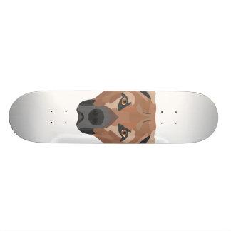 Skateboard Perro Brown Labrador del ilustracion