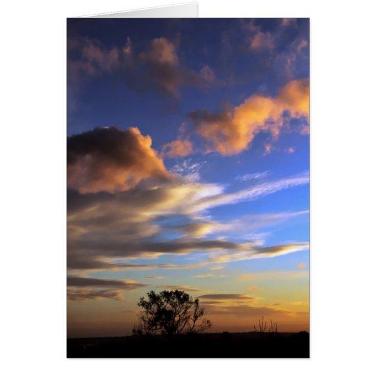 Skyscapes: Tarjeta de la reguera de Ferntree