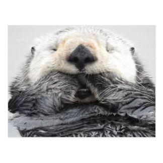 Sleeping Sea Otter Postal