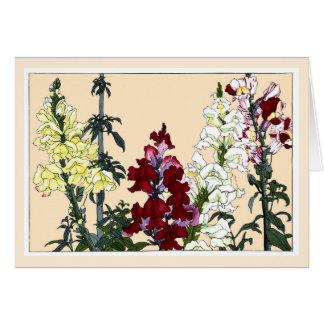 Snapdragons colorido, tarjeta botánica del arte