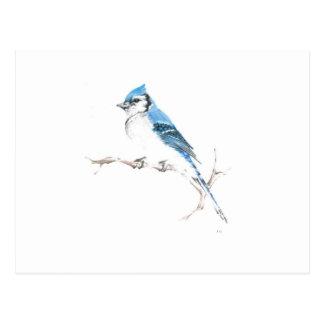 Snowbird Postal