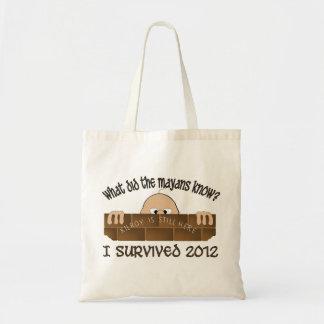 """Sobreviví 2012"" bolsos Bolsa Tela Barata"