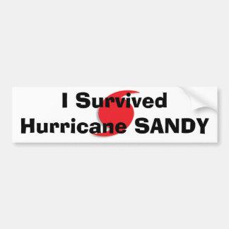 Sobreviví el bumpersticker de SANDY del huracán Pegatina Para Coche