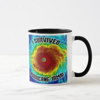 Sobreviví la taza de Irma del huracán