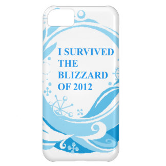 Sobreviví la ventisca de 2012