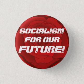 """""""Socialismo para nuestro futuro!"""" Botón"""