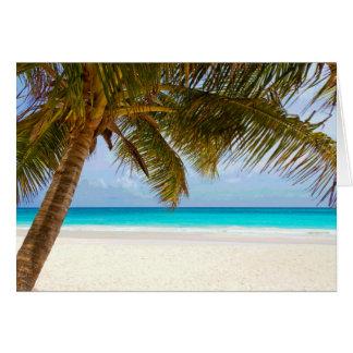 Sol del cielo azul del paraíso de la palma tarjeta de felicitación