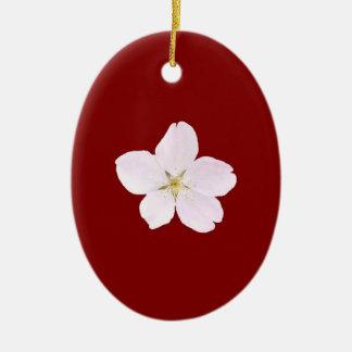 Sola flor de cerezo 01 ornatos