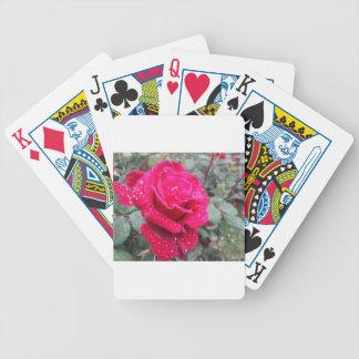 Sola flor del rosa rojo con las gotitas de agua baraja de cartas bicycle