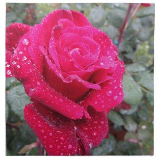 Sola flor del rosa rojo con las gotitas de agua servilleta de tela