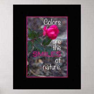 Sola fotografía color de rosa rosada de doblez impresiones