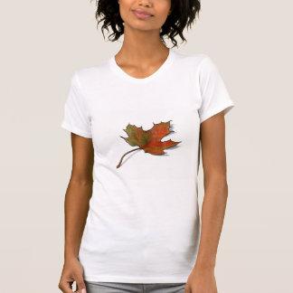 Sola hoja de arce en lápiz del color: Arte del Camiseta
