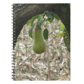 Sola pera verde que cuelga en el árbol cuaderno