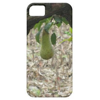 Sola pera verde que cuelga en el árbol funda para iPhone SE/5/5s