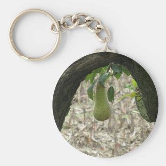 Sola pera verde que cuelga en el árbol llavero