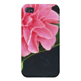 Solas flores rosadas de la flor iPhone 4 protector