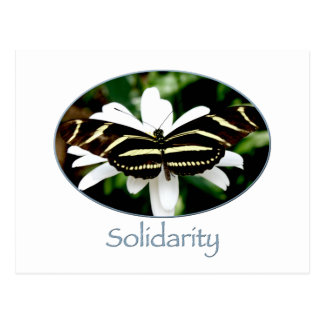 Solidaridad Notecard Tarjeta Postal
