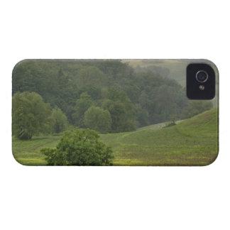 Solo árbol en el campo de granja agrícola, Toscana iPhone 4 Case-Mate Carcasa