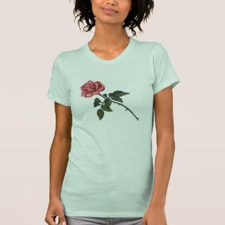 Solo color de rosa rosado: Arte del lápiz del Camisetas