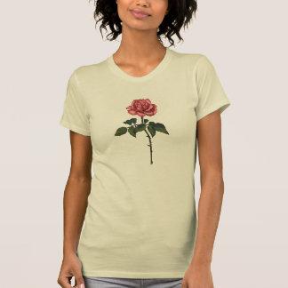 Solo color de rosa rosado: Dibujo de lápiz del Camiseta