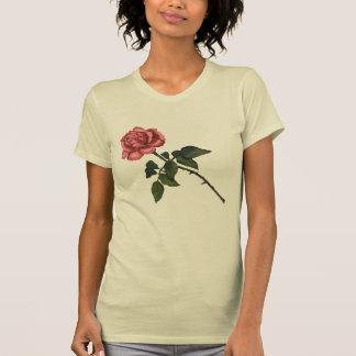 Solo color de rosa rosado: Dibujo de lápiz del Camisetas