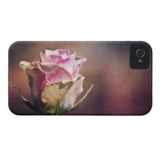 Solo color de rosa rosado iPhone 4 Case-Mate cárcasa