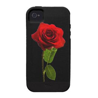"""Solo rosa rojo "" Vibe iPhone 4 Carcasas"