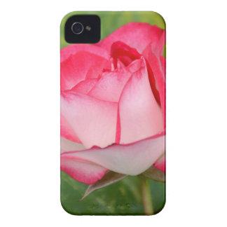 Solo rosa rosado y blanco iPhone 4 Case-Mate carcasas