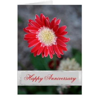 Solo saludo rojo del aniversario de boda de la tarjeta de felicitación