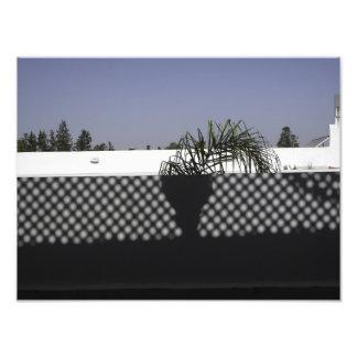 Sombra Impresion Fotografica