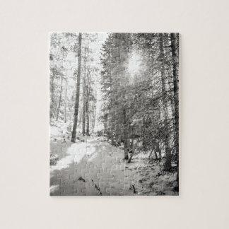 Sombras del bosque de la sol del invierno del gris puzzle