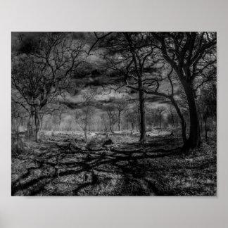 Sombras infrarrojas del paisaje en las maderas póster