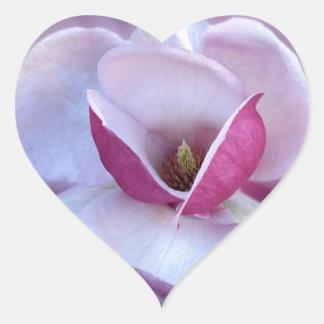 sombras rosadas de la magnolia pegatina en forma de corazón