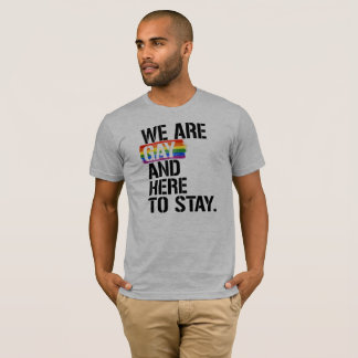 Somos gay y aquí permanecer - - las derechas de camiseta