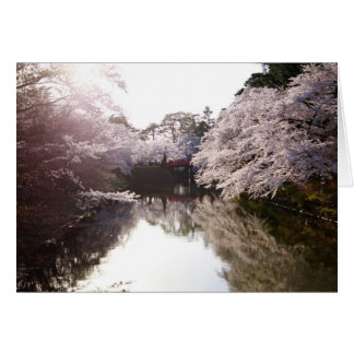 Soño con Sakura Tarjeta De Felicitación