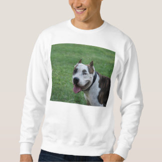 sonrisa americana del terrier de pitbull sudadera