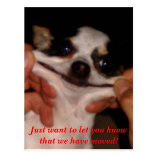 Sonrisa del perro postal
