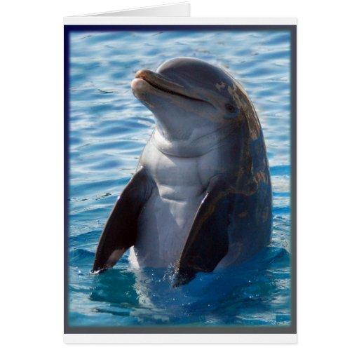 soporte del delfín tarjeton